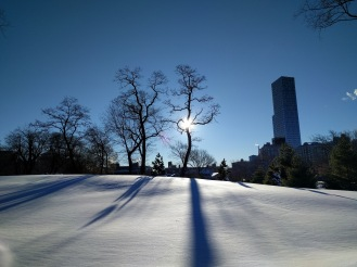 Central Park after the NYC blizzard of 2016